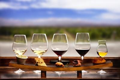 Degustácia vín - súboj slovenských a európskych odrôd